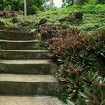 path to Punta Bunga