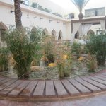 In the courtyard area