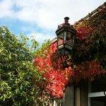 Summer leaves meet autumn leaves at Farlam Hall