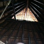 Roof in Palapa #1