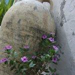 Photo de Inn El Medina