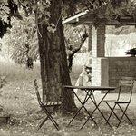 Photo of B&B L'Arseni 1921