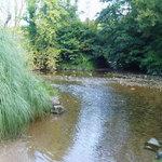 Ashprington - The Waterman's Arms - Bow Bridge Ford