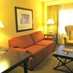 Standard suite living room area