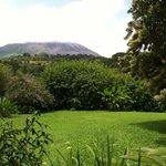 View of volcano from our back porch.