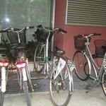 free bikes