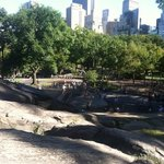 one of many playgrounds in Central Park