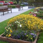Beautiful flower bed at the front of the hotel