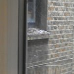 The pigeon mess view from the window.