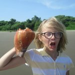 Shells as big as your head!