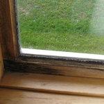 fenêtre avec moissisure