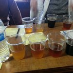 the 4 beers we sampled.