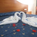 Surprise swans in bedroom at Hotel Acapulco