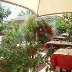 Photo of Le Grand Jardin