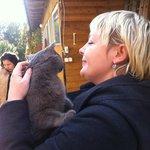 хозяйский кот