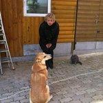 хозяйский пес