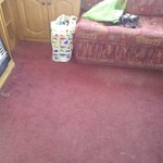 Silver Caravan Living room Carpet, threadbare and stinking