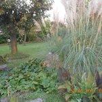 altro particolare del giardino