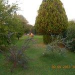 sempre lo splendido giardino