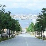 八幡坂03