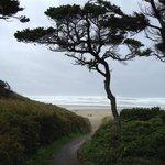 nice gentle path to the beach