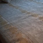 The stained bedspread