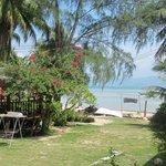 Beachfront + restaurant