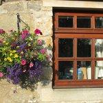 Chicken Coop View Cottage - kitchen window