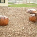 Wooden carved giant 'slaters' to play on. (butchie-boys)