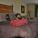 Welcoming Bear in Room