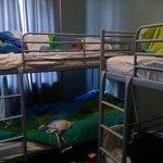 Dorm-type