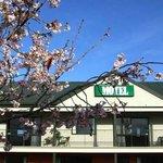 Darfield Motel