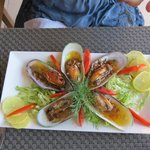 mussle starter