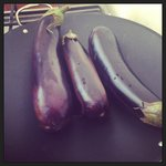 Cooking eggplant for Turkish Eggplant Yoghurt Dip
