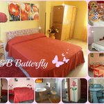 Bed and Breakfast Butterfly Foto