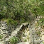 vista delle innumerevoli scale del parco