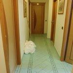 Corridor, room 44