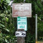 Trail の入口(Puualoha St側)