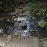 川渡り(細いロープ有)
