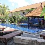 Pool area / swim up bar
