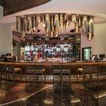 Fanus Bar