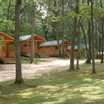 Exterior view of cabins