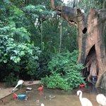 Parque da Aves