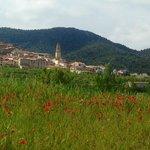 Primavera en Peñarroya de Tastavins