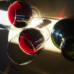 love Riscal's wine