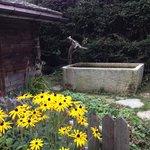 petit jardin aromatique