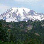 Mt Rainier, trails near Paradise Inn