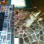 Huge fireplace with moose head-sorry sideways