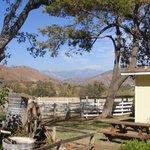 Americas Best Value Inn & Suites- Three Rivers Foto