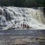 Amazonas Day Tour Foto